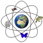 Is the future of biodiversity conservation nuclear?
